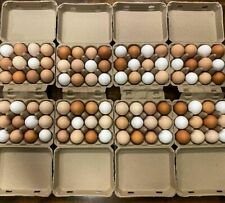 Henlay Vintage Square Style Egg Cartons 200bundle