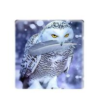 5 x 12mm  Snowy Owl square glass cabochon