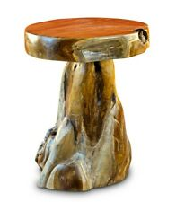 Root Wood Table 19 11/16in Side Tree Trunk Wooden Podium Round