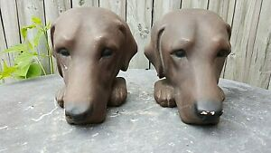 Labrador Hound Dog Bookends by Gargoyles Studio Brooklyn,NY .'TheHandsome Two'