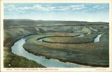 Yellowstone National Park Trout Creek Haynes c1920 Postcard