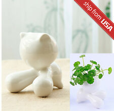Kitten Cat Cute Kawaii Head Hair Planter Mini Pot Novelty Gift Home Deco Ceramic