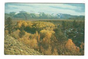 Mono Craters Mono County California Vintage Postcard AF249