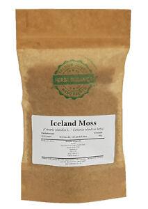Iceland Moss - Cetraria Islandica L. # Herba Organica #