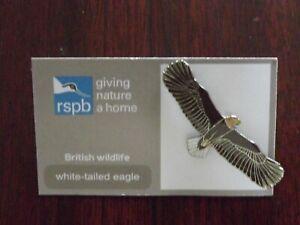 RSPB GNaH white-tailed eagle metal Pin Badge on  FR card