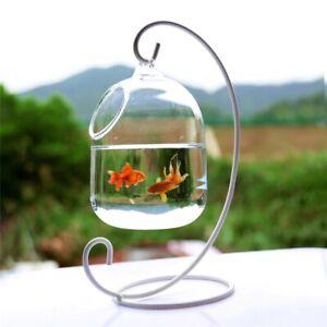 Mini Hanging Aquarium Ornament Table Fish Tank  New