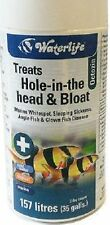 WATERLIFE OCTOZIN 21 TABLETS TREATS PARASITES WHITESPOT HOLE IN HEAD & BLOAT