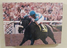 Zenyatta 2009 Breeders Cup Canvas picture with Jockey Mike Smith - Brand New!