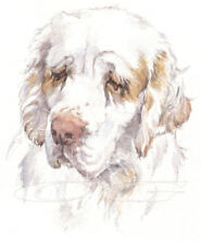 CLUMBER SPANIEL.         3 Blank Dog greeting cards by Christine Groves