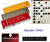 1x Schwarzkopf IGORA Permanent Color Creme Naturals / Golds 60ml FREE post