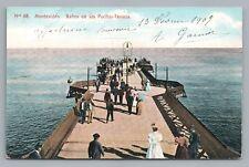 Banos de los Pocitos-Terraza MONTEVIDEO Antique Tarjeta Postal Pier Stamps 1909