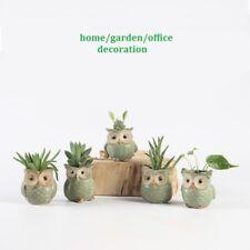 1pc Random Owl Mini Ceramic Flower Pot  Plant Flowerpot Home Office DIY Decor