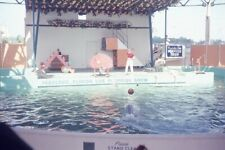 Porpoises Playing Basketball, Florida Live Porpoise Show 1965 Photo Slide