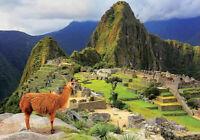 Machu Pichu, Peru puzzle 1000 piezas Educa 17999