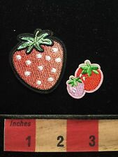 Appliqué Style RED STRAWBERRY FRUIT BERRY Patch Lot 2 Styles & You Get Both 68WI