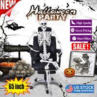 65 Inch Halloween Full Body Human Skeleton Decoration Party Skull Model Props