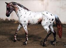 Custom Classic Breyer Liam POA Appaloosa Price Reduced