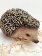 Real Life Pygmy Hedgehog Vivid Arts Pet Pals Garden Ornament
