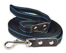 Heavy Duty Nylon Dog Leash with Leather Enforced Snap for Large Breeds (15 Ft)