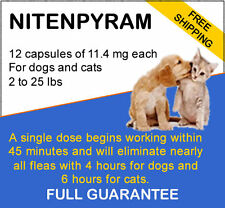 800 capsules Generic Flea Killer capstar for Dogs/Cats 2-25 lbs 11.4 mg