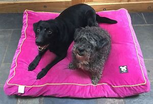 Dog beds by Mr Barker cushion bed pet bed available in 2 sizes and 3 colours