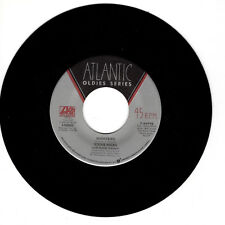 STEVIE NICKS Nightbird M- 45 RPM REISSUE