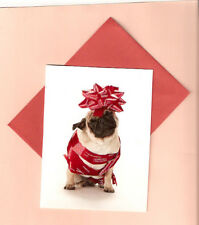 Pug with a Bow Christmas Cards Box of 12