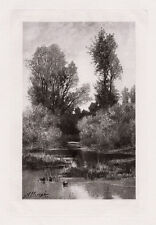 "1800s Auguste Allonge Antique Nature Print ""Ducks in a Lowland Brook"" SIGNED COA"