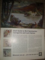 Old art advert Shell guide to bird sanctuaries by Donald Watson 1965 ref BW