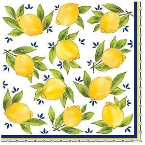 Lemon Yellow Tuscany Dinner Party Paper Napkins 20pk Fruit Lemonade Citrus Decor