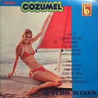 Waldo Wines Cozumel Synth Moog Cumbia Tropical Sexy Cover Cheesecake lp