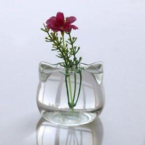 Mini Cat Shaped Glass Vase Hydroponic Plant Flower Desktop Container Pot Decor