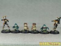 30mm Infinity WDS painted Tohaa:Kaeltar Specialists BOX i30