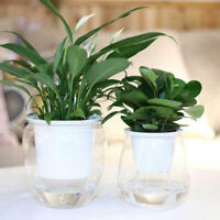 1 PCS Self Watering Plant Flower Pot Wall Hanging Planter Home Garden Decoration