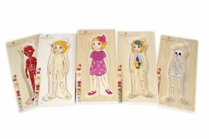 Discoveroo Body Layer Puzzle - Girl