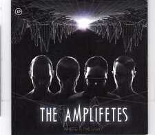 The Amplifetes - Where Is The Light EP - Promo CD - 2012 - Electronic Sweden