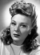 8x10 Print Evelyn Ankers Beautiful Portrait 1944 #5501500
