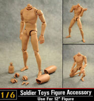 "1/6 Dragon 12"" Male Body Figure Normal Shoulder Soldier Story Model Toys B001"
