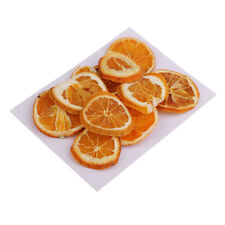 10PCS Dried Pressed Fruits Orange Slices for Resin Casting Jewelry Crafts