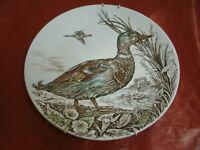 """PIATTO INGLESE da Appendere WILD BIRDS """" The Mallard """" d 25 cm"""