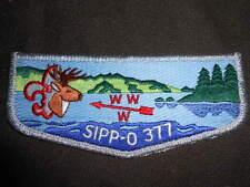 SIPP-O 377 s22 Flap   OAE