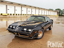 1980 Pontiac Trans Am 24 X 36 INCH POSTER, classic, muscle car, bandit, black