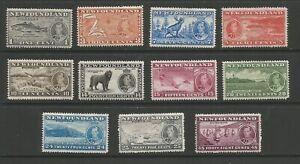 Newfoundland 1937 Coronation Set Mounted Mint SG 257/67