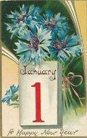 NEW YEAR – Blue Flowers Happy New Year Tuck Postcard - 1908
