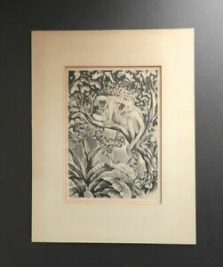 AGNES TAIT Listed Artist Pencil Signed Lithograph Spider Monkeys Ed. 25 WPA