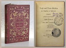 Pawikovski Trost- und Trutz-Büchlein Zeitgedichte 1888 Lyrik Dichtkunst xz
