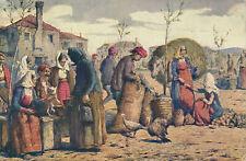 PC49519 Markt in Spalato. Dalmatien. V. Cvitanic. B. Hopkins