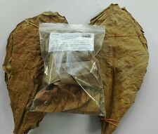 15 grams GRADE A+ INDIAN ALMOND LEAVES CATAPPA KETAPANG Shrimp Betta