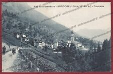 BERGAMO RONCOBELLO 08 VAL BREMBANA Cartolina viaggiata 1925
