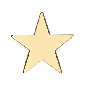 Gold Star Badge Pin Pentagram Army Military Award Prize Winner CLASS MERIT PRIZE